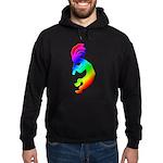 Rainbow Kokopelli Hoodie (dark)