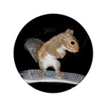 "Surfer Squirrel 3.5"" Button"