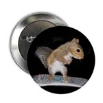 "Surfer Squirrel2.25"" Button"