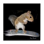 Surfer Squirrel Tile Coaster