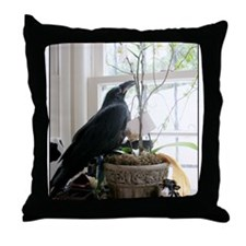 Blue-Eyed Baby Raven Throw Pillow