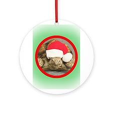 Tortoise, round image Ornament (Round)
