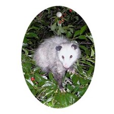 Opossum Cherry Tree Ornament (Oval)