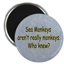 Sea Monkeys Aren't Real Magnet