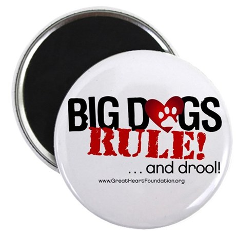 "Big Dogs Rule 2.25"" Magnet (100 pack)"