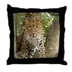 Leopard Cheetaro Throw Pillow