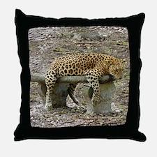 Leopard Sundari Throw Pillow