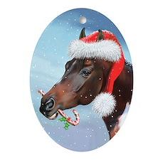 Sky King Christmas Oval Ornament