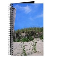 Cape Cod Beach Journal