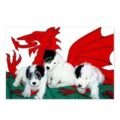Sealyham Terrier Pup Postcards (Package of 8)