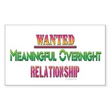 Wanted: Meaningful ... Rectangle Decal