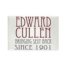 Sexy Edward Cullen Rectangle Magnet
