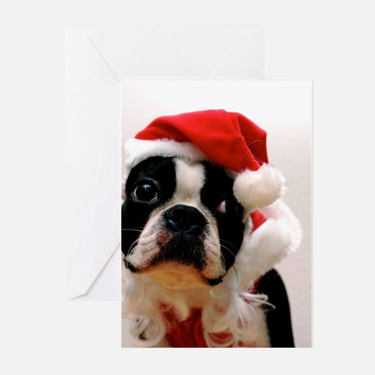Boston Terrier Santa Claus Greeting Cards (Pk of 2