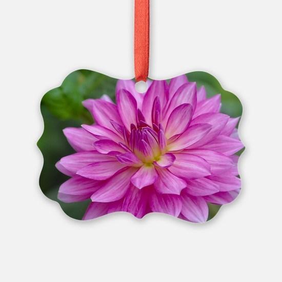 Unique Greetingcards Ornament