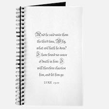 LUKE 23:22 Journal