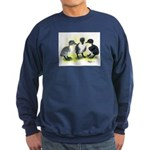 Swedish Duck Ducklings Sweatshirt (dark)
