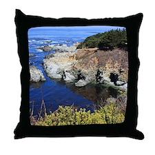 Big Sur, California Throw Pillow