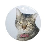 Tabby Cat Christmas 2004 Ornament (Round)