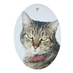 Tabby Cat Christmas 2004 Oval Ornament