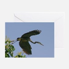 Greeting Cards (Pk of 20) - Great Blue Heron
