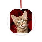 Grey Tabby Kitten Ornament (Round)