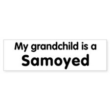 Samoyed grandchild Bumper Car Sticker