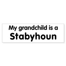 Stabyhoun grandchild Bumper Bumper Sticker