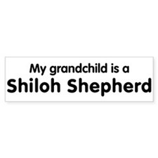 Shiloh Shepherd grandchild Bumper Car Sticker