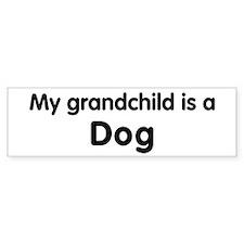 Dog grandchild Bumper Bumper Sticker