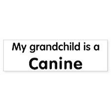 Canine grandchild Bumper Bumper Sticker