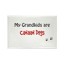 Canaan Grandkids Rectangle Magnet