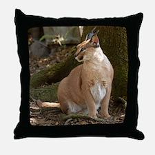 Caracal Lynx Throw Pillow