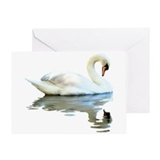 Swan Reflects Greeting Card
