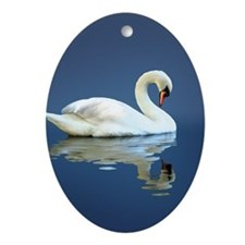 Swan Reflects Oval Ornament