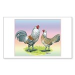 Ameraucana Chickens Pair Rectangle Sticker 50 pk)