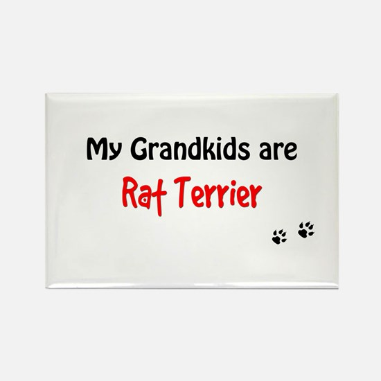 Rat Terrier Grandkids Rectangle Magnet