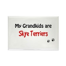 Skye Grandkids Rectangle Magnet