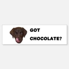 Got Chocolate Labrador? Bumper Bumper Bumper Sticker