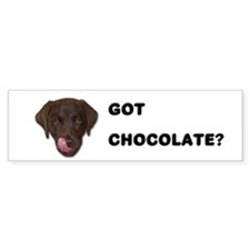 Got Chocolate Labrador? Bumper Bumper Sticker