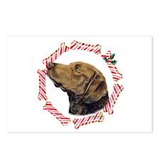 Chesapeake Bay Retriever Christmas Postcards (Pack