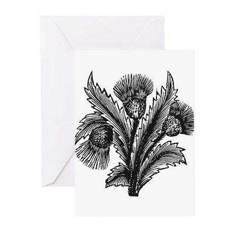 Thistle Greeting Cards (Pk of 20)
