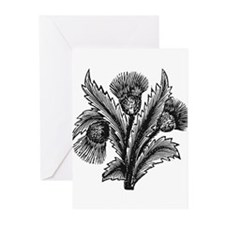 Thistle Greeting Cards (Pk of 10)