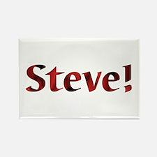 Steve! Design #189 Rectangle Magnet