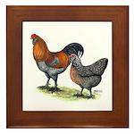 Ameraucana Fowl Framed Tile