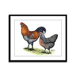 Ameraucana Fowl Framed Panel Print