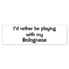 Be with my Bolognese Bumper Car Sticker