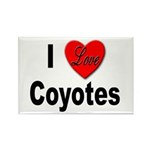 I Love Coyotes Rectangle Magnet (10 pack)