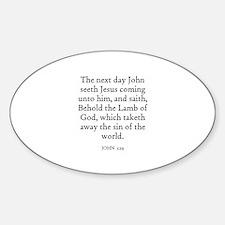 JOHN 1:29 Oval Decal