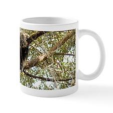 Bearcat Mug