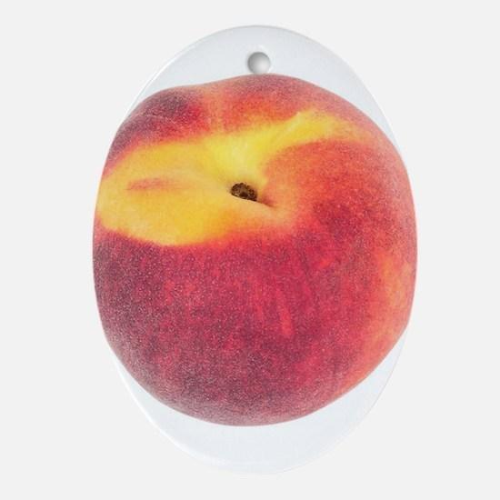 Atlanta Fuzzy Peach Oval Ornament